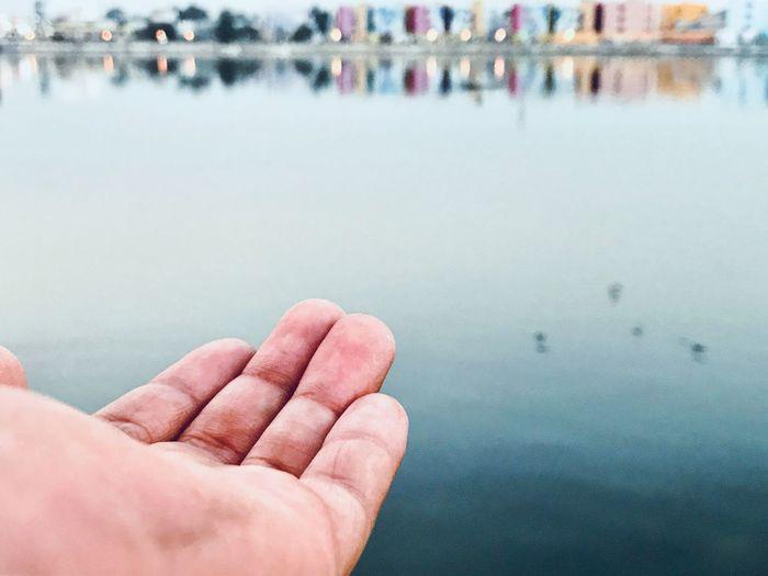 Cropped hand reaching lake