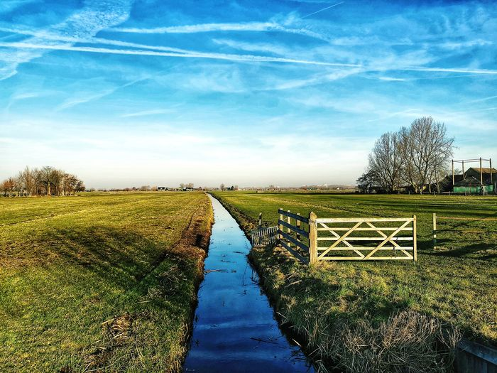 Delfland Holland 💕 Huaweiphotography Mate20pro Mate 20 Pro Huawei Photography Rotterdam Schiedam, Netherlands Delfland Nederland🇳🇱💕 Ferme Rotterdam, Netherlands Nature Calm Scenics Agriculture Sky Cloud - Sky Farmland Cultivated Land Agricultural Field Farm Plantation Patchwork Landscape Growing Countryside Field vanishing point