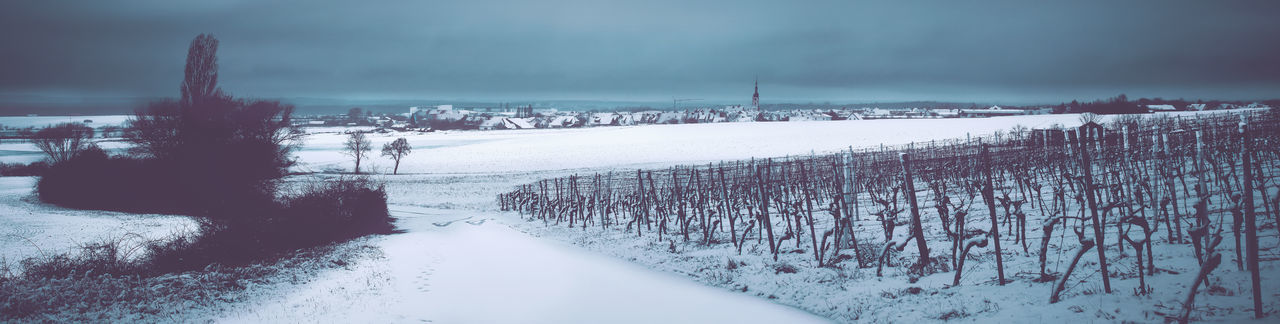 Frankonian winter scenery Winter Landscape Panorama Frankonia Bavaria Winter Scenery Snow Cold Temperature Nature Scenics - Nature Environment Sky No People Plant Tranquil Scene Frozen White Color Water Tranquility Tree Beauty In Nature Day Non-urban Scene Outdoors Blizzard Snowing