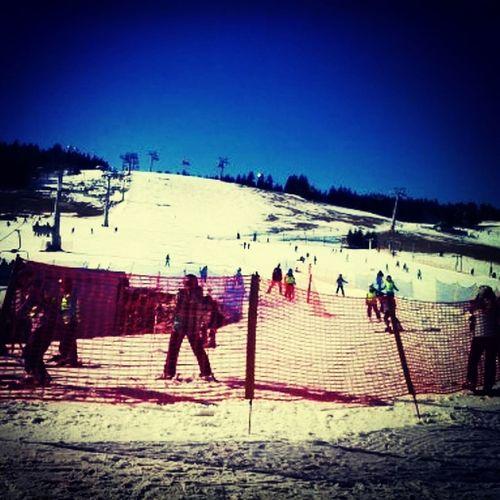 Snowboard Beauty Winter