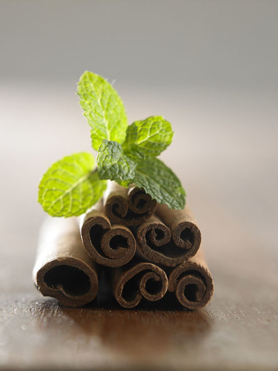 cinnamon sticks and mints leaves Leaf Mint Mint Leaf - Culinary Cinnamon Cinnamon Sticks Wood - Material Table Plant Part Food And Drink Food Herb Freshness Green Color Plant No People Indoors  Close-up Nature Selective Focus Aroma Ingredient Flavor Condiment Still Life Healthy Eating
