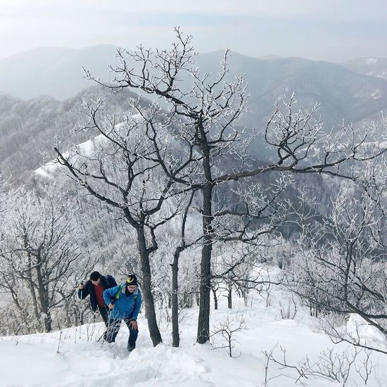 Final part of the approach to Ostrc (752 m) at Nature Park Zumberak - Samoborsko gorje, Croatia, 2017. Ostrc Samoborsko Gorje Mountain Winter Snow Bare Tree Covered Nature Mountaineering Hiking Adventure Outdoors Beauty In Nature