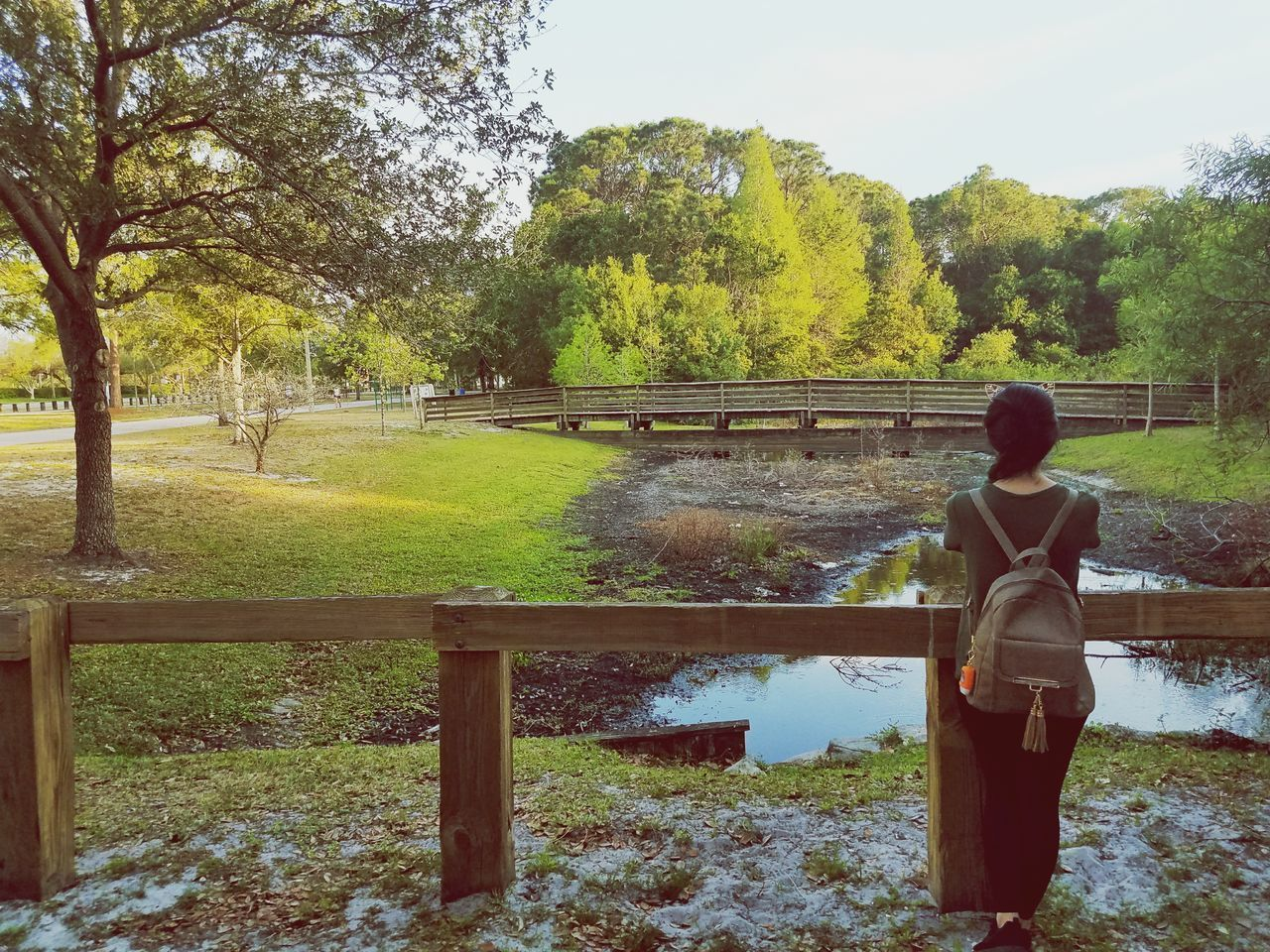 REAR VIEW OF WOMAN STANDING BY TREES IN PARK