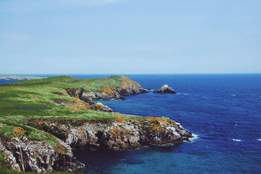 Great Saltee Island Nature Scenery Blue Skies Blue Seas Wilderness Water Sea Clear Sky Blue Cliff Sky Landscape Rocky Coastline Headland Rugged Ocean Calm Seascape Countryside Coast