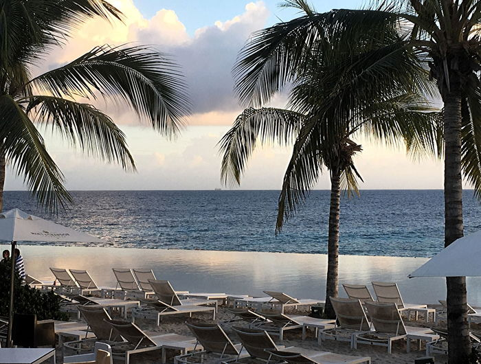At Jan Thiel Beach in Curaçao Beach Beauty In Nature Day Horizon Horizon Over Water Infinity Pool Nature No People Outdoors Palm Tree Sea Sky Sunset Tree Water