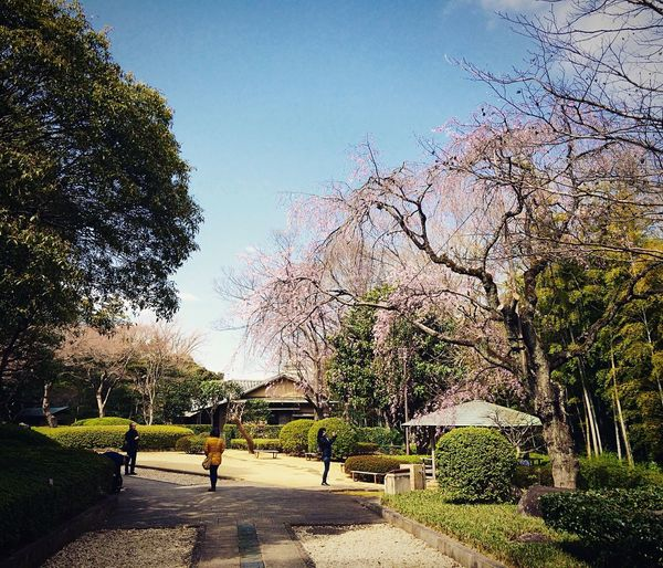 戸定邸 松戸 地元 徳川慶喜 千葉 Matsudo Enjoying Life 徳川昭武 近所