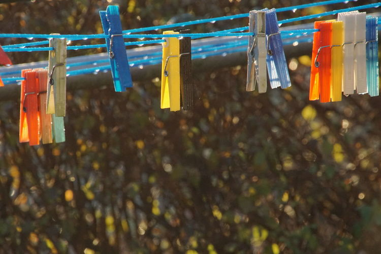 #autumn Sun #clothesline #clothespins #colors #hang To Dry #wet Dew #morning #drops #plant #nature HashTags #PS #amazing #art #artistic #bestphoto #colorfull #colors #cool #instaphoto #instapic #instashot #ph #photo #photograph #photography #photooftheday #photos #photoshop #photoshot #photowall #picoftheday