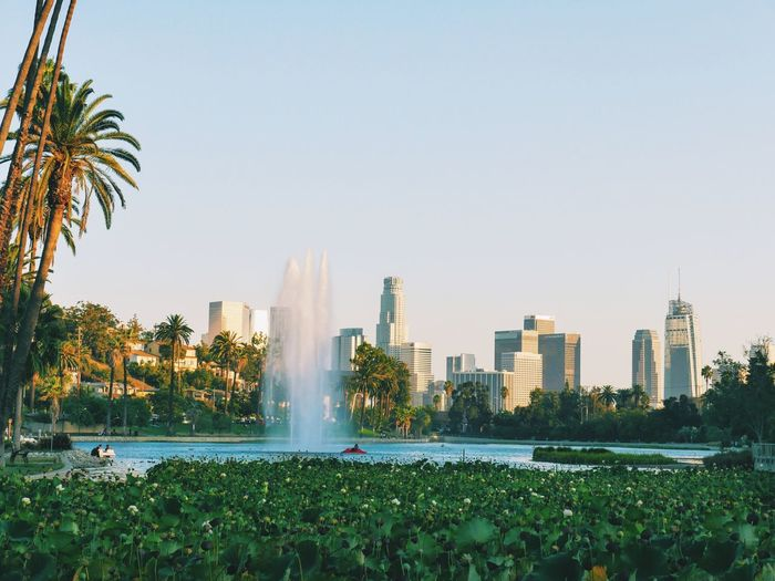 Park Losangeles Urban Skyline Naturevscity Colors Blue Color Palette Fountain Spraying Water Motion City Architecture Clear Sky Skyscraper City Life Tall - High Building Exterior Growth Plant Modern Sunbeam Outdoors Splashing Garden Nature