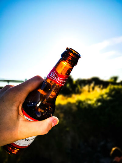 Budweiser Budwiser Human Hand Drink Alcohol Holding Sunset Sky Close-up Beer Glass Beer Bottle Beer - Alcohol Beer Tap Craft Beer Celebratory Toast Happy Hour