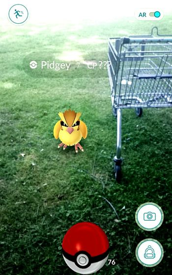 Pokemon Go Pokemon Hunting Pokémon PokemonGo Pokemonphotography Shopping Cart Cart Pokémon Shopping Check This Out Pokemon Hype Pidgey Pokémon Pokemon Go
