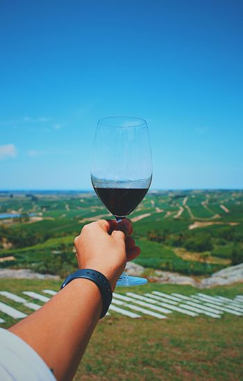 Cropped hand of man holding wineglass at vineyard against sky