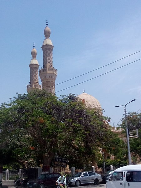 Outdoors Tree Architecture Mosque
