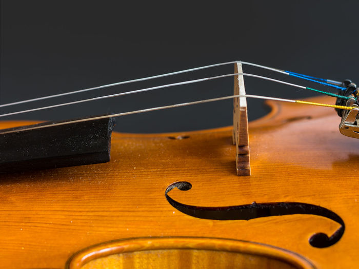 Classical Music Playing The Violin. Violino Musical Instrument Musical Instrument String Musical Instruments Violin Violinist