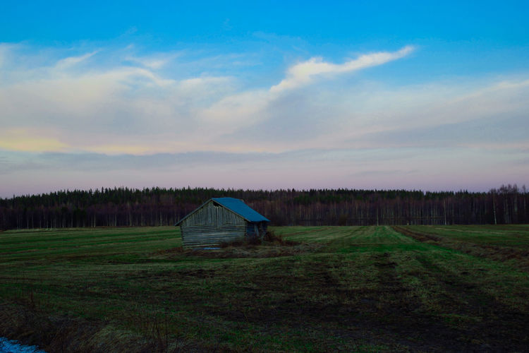 View to field Agriculture Barn EyeEm Best Shots EyeEm Nature Lover EyeEm Selects EyeEmBestPics Field Finland Grass Lapland Nature Tranquility Tree Beauty In Nature Built Structure Cloud - Sky Forest Landscape Nature_collection No People Outdoors Rural Scene Scenics - Nature Sky Tranquil Scene EyeEmNewHere