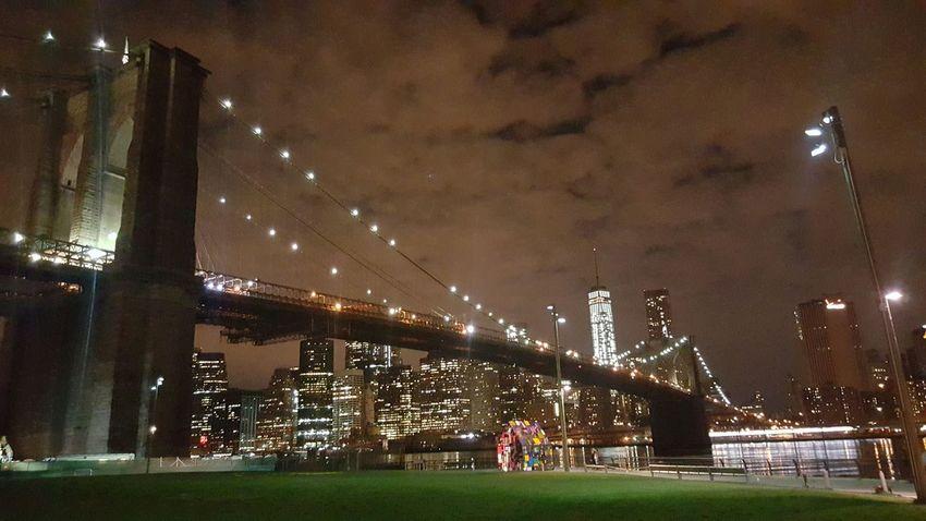 Nightlife Downtown Brooklyn
