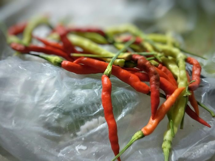 group of chilli