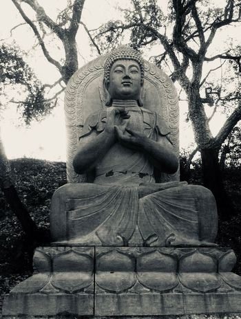 Buddha Eden Garden, Portugal Statue Sculpture Art And Craft Human Representation Tree Religion Spirituality