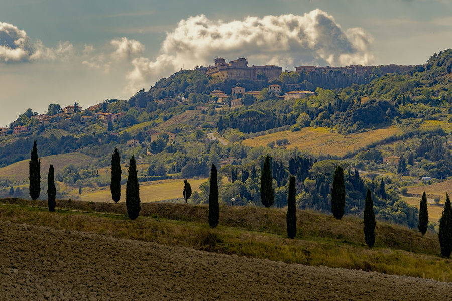 Beauty In Nature Beauty In Nature Cloud - Sky Cypresses Landscape Mountain No People Scenics Sky Tranquil Scene Tranquility Travel Destinations Tuscany Tuscany Countryside Tuscany Italy Tuscany Landscape