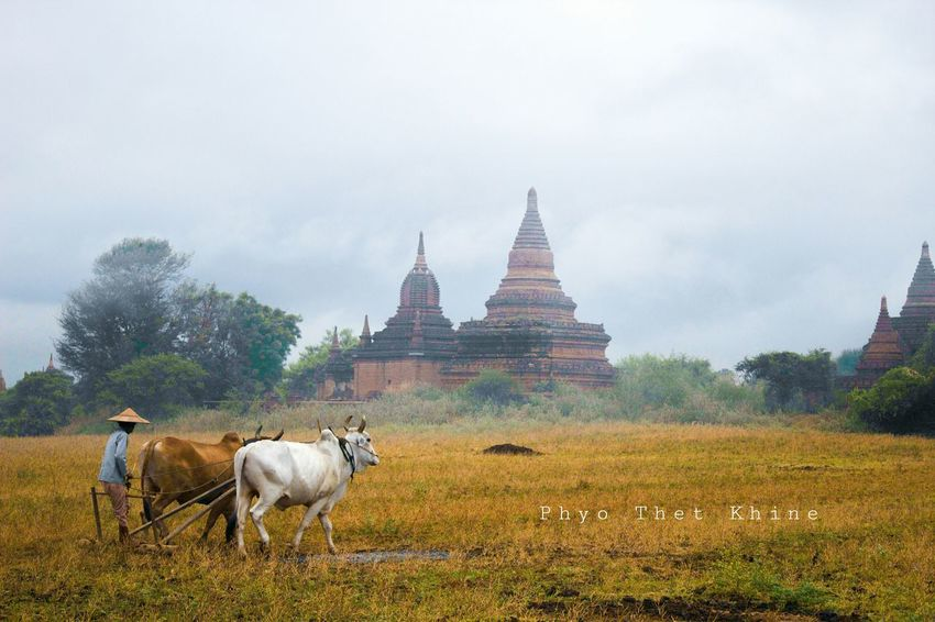 Bagan, Myanmar Cloudy Cannon 1300D
