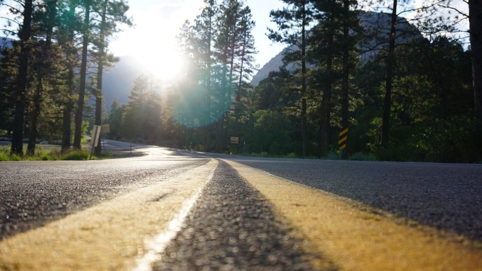 EyeEmNewHere Road Tree Sunlight The Way Forward Lens Flare No People Sun Sunbeam Nature Asphalt Outdoors Tranquility Scenics Beauty In Nature Sky EyeEm Nature Lover Outdoor Photography Wild Nature Nevada Hikingadventures