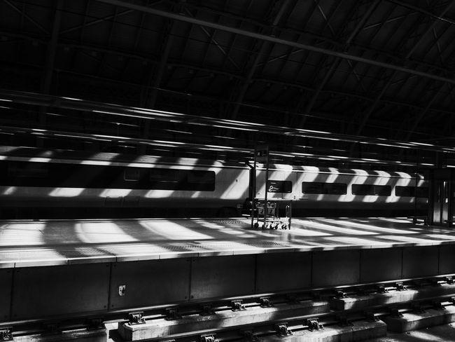 France Train Train Station Stripes Everywhere Patterns Stripes Stripes Railway Rails Paris Light And Shadow Creative Light And Shadow Shadow Black And White Black & White Blackandwhite Photography Blackandwhite Light And Shadows Showcase: January