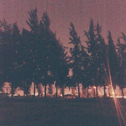 Siempre hay un rayito de luz en la oscuridad, sea donde sea yo siempre encuentro el mio y me guía a donde debo de llegar, como esta noche por ejemplo. LindaNoche EstadioNacional NocheDeConversaciones Gracias . ♡