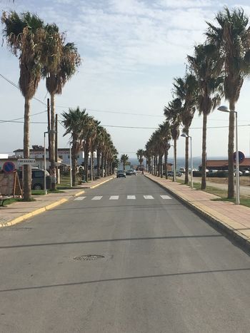Tarifa Spain Palm Tree Sky Road Outdoors Nature No People Lifestyles Shore Sand Nature Coast