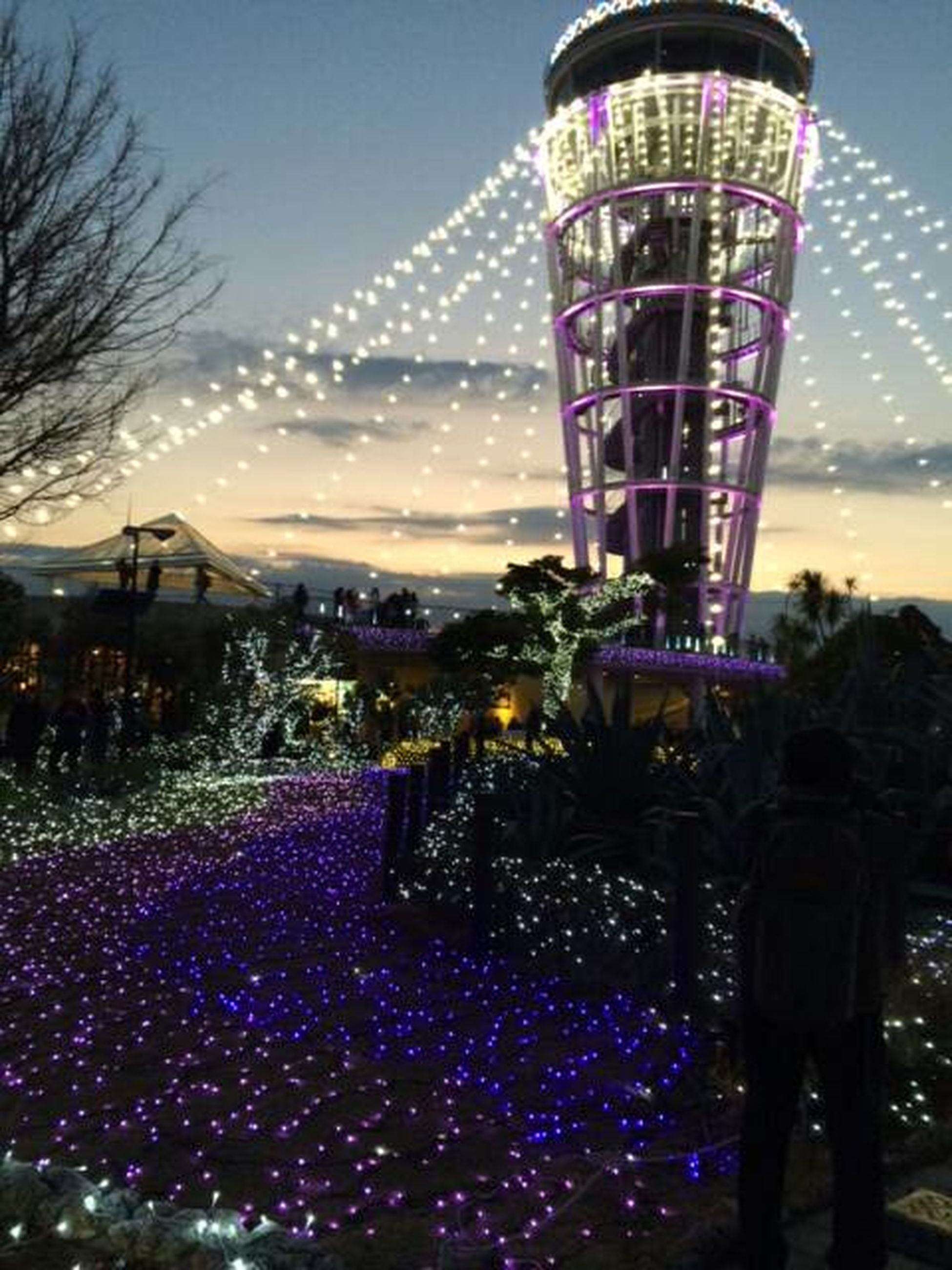 illuminated, sky, built structure, architecture, night, clear sky, building exterior, city, lighting equipment, leisure activity, dusk, tree, outdoors, amusement park ride, arts culture and entertainment, amusement park, ferris wheel, incidental people, travel destinations