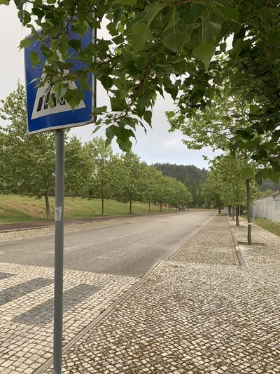 Road sign by trees on footpath in city
