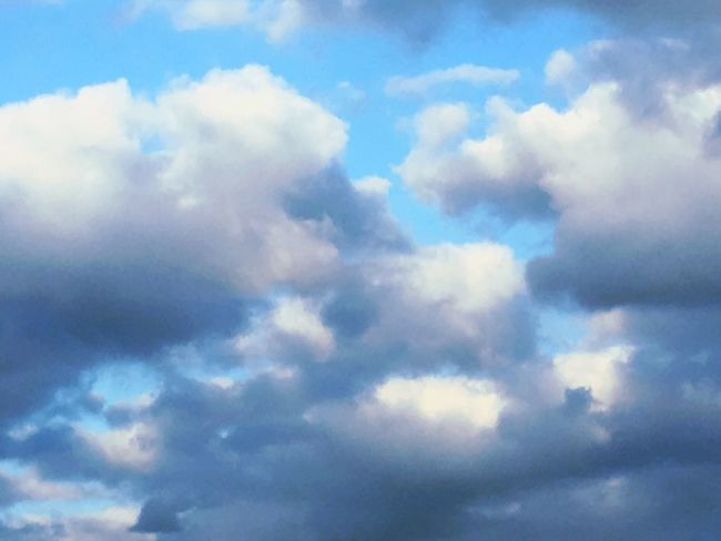 Clouds And Sky Cloud - Sky Cloudscape Sky Nature Scenics Low Angle View Fluffy Blue White Purple