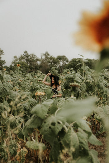 Beauty In Nature Day Field Green Color Growth Land Leaf Nature One Animal One Person Outdoors Plant Plant Part Real People Selective Focus Sky