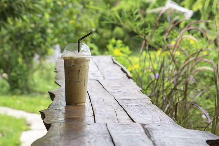 Iced coffee in glass on the table Background Pennisetum pedicellatum and pond. Wood Bar Beautiful Beauty Beverage Blossom Bright Brown Cafe Caffeine Cappuccino Chocolate Cocoa Coffee Color Colorful Cool Cup Delicious Drink Environment Floral Flower Foliage Grass Green Ice Latte Leaf Meadow Milk Natural Nature Orange Outdoor Pennisetum Plastic Poaceae Put Refreshment Rural Straw Sugar Summer Sweet Tree Water Wildlife Wooden Yellow