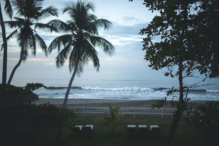 Beach Beauty In Nature Cloud - Sky Coconut Palm Tree Growth Horizon Horizon Over Water Land Nature No People Outdoors Palm Tree Plant Scenics - Nature Sea Sky Tranquil Scene Tranquility Tree Tropical Climate Tropical Tree Water