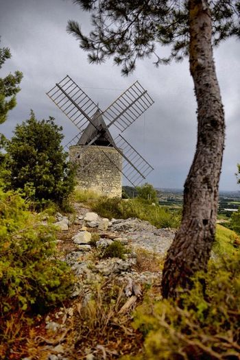 Near Mezoargue Mill Landscape Moulin First Eyeem Photo