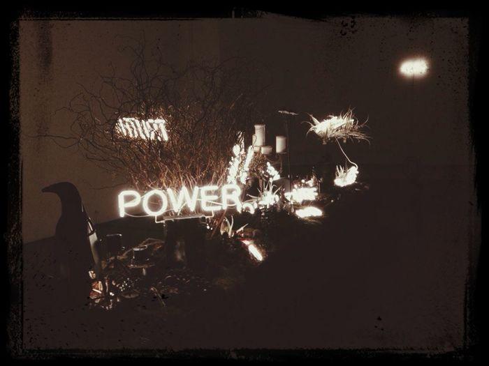 властьцветов Flower Power Flower/power