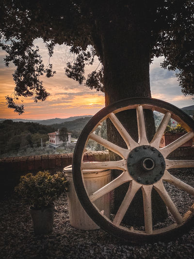 Wheel by trees on field against sky during sunset