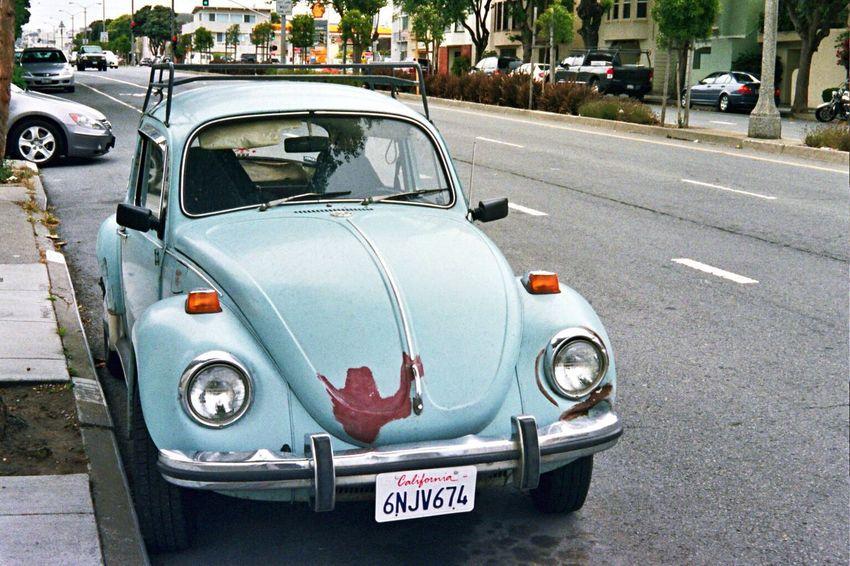 Car Land Vehicle Vw Bug NATURA Classica Koduckgirl Film Natura1600
