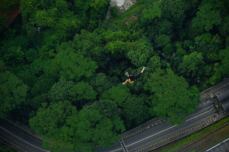 Aerial view of man base jumping over trees