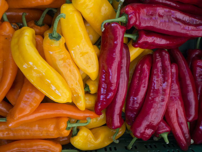 Full frame shot of multi colored chili peppers