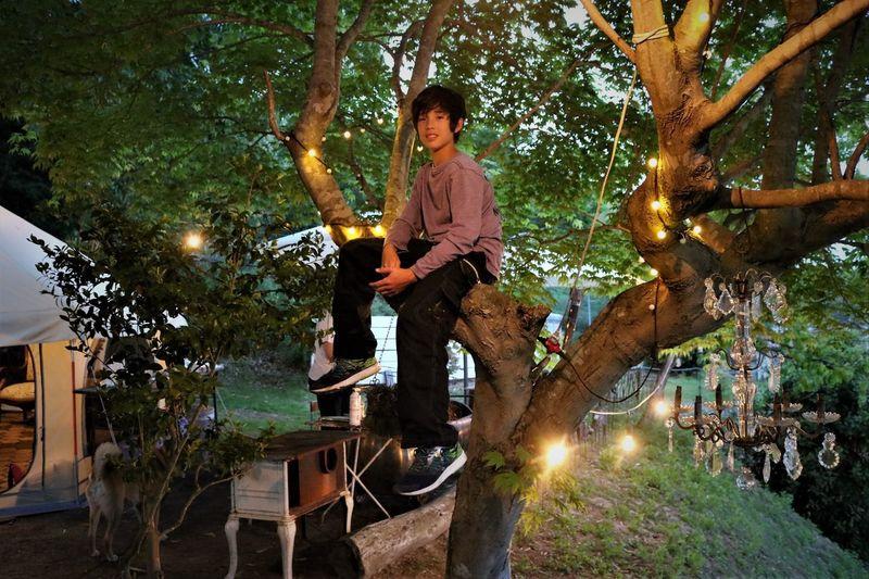 Portrait Cute Boy Sitting On Tree