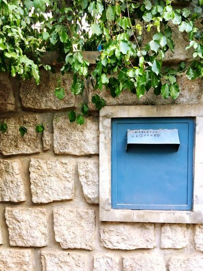 Classic Day Plant Leaf Outdoors No People Ivy Communication Built_Structure Green Color Growth Architecture Nature Close-up Mailbox EyeEmNewHere Let's Go. Together.