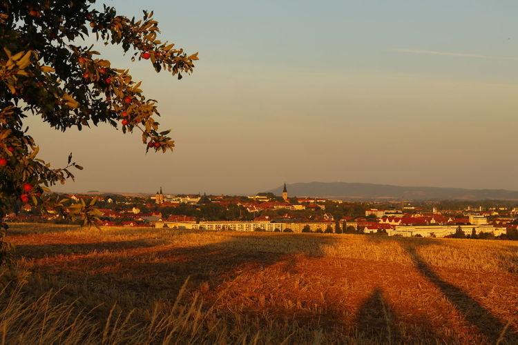 View over field to Nordhausen City Cityscape Landscape Photography Landscape_Collection Outlook Panorama View Beauty In Nature Daylight Environment Field Growth Land Landscape Landscape #Nature #photography Landscape_photography Nature Naturelovers No People Outdoors Outlook, Prospect, Panorama, Vista, Scene, Aspect, Perspective, Spectacle, Sight; Scenery, Landscape Plant Scenery Scenics - Nature Sky