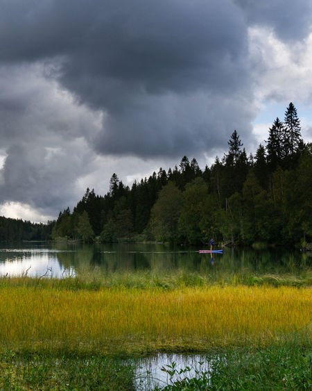 Colors Hiking Norway Stand Up Paddling Adventure Beauty In Nature Cloud - Sky Day Environment Grass Growth Lake Land Nature No People Outdoors Plant Reflection Scenics - Nature Sky Sognsvann Tranquil Scene Tranquility Tree Water