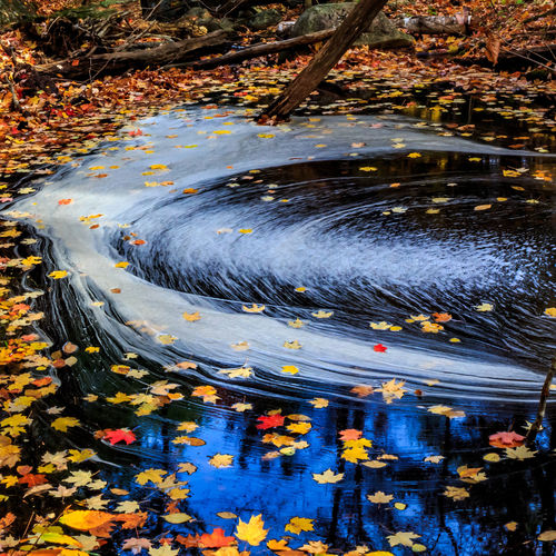 Day Fall Fall Beauty Fall Colors Fall Leaves Nature No People Outdoors Reflections Stream Nature_collection Nature Photography Beauty In Nature Leaves Riverside Cottage Life, Water Reflections