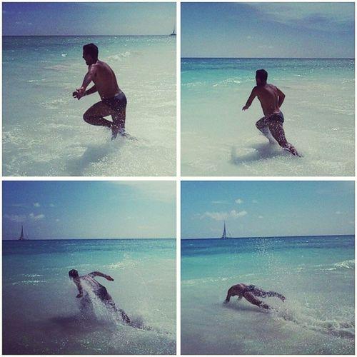 Modalitá Cagnotto: 🔛ON🔛 Cagnotto Tania Love Summer Dog Followback Follow4follow Me Italy Diving Mio Instagood Beautiful Picoftheday A Dallapè Piscina Sea Tuffi  Photo Swim Summer2014 Arena Amore Sun tuffo cane picture la mare