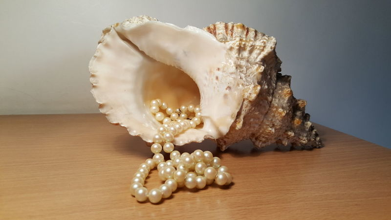 Single Object No People Jewelry Gold Colored Luxury Indoors  Close-up Gold Precious Gem Day Pearl Pearls Pearls❤ Caracoles  Caracol Seashell Seashells Indoors  Lieblingsteil Fine Art Photography