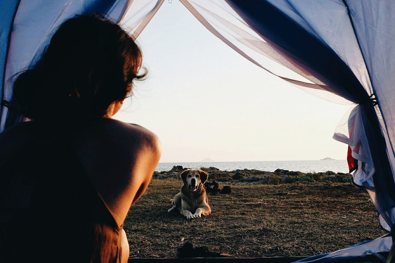 Rear View Of Woman Looking At Dog Through Tent