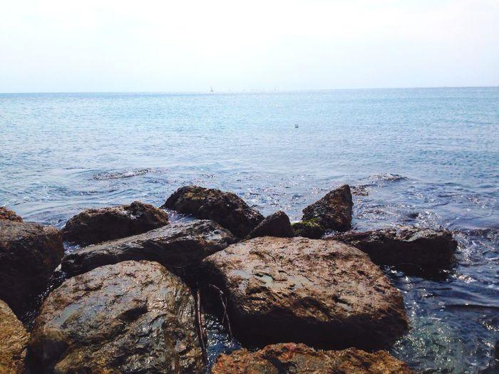 Sea Rule Of