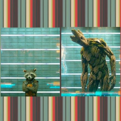 Guardians_of_the_galaxy Groot Rocket_Raccoon Collage