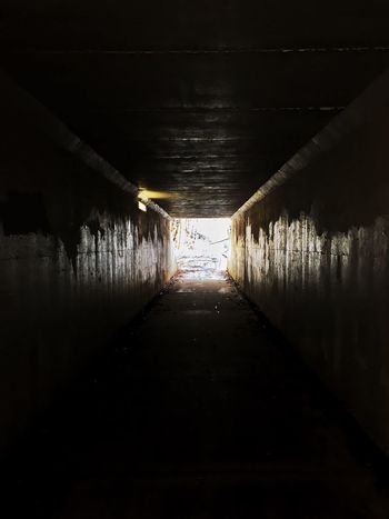 Tunnel Vision Tunnel Vision Tunnel Diminishing Perspective The Way Forward Bridge - Man Made Structure Sunlight Architecture Day No People Outdoors Built Structure Illuminated Underneath Water Nature